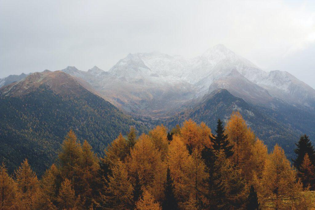 Jesienny wyjazd we dwoje - góry i drzewa jesienią